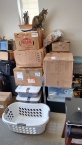 Box Mountain - Adventures in Moving